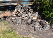 Firewood to give away